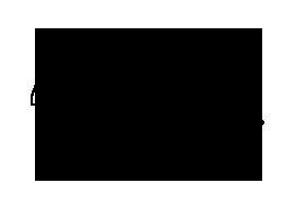 Maison Nicole Logo